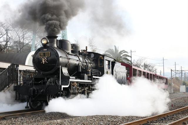 train_20210103_sun_055.jpg