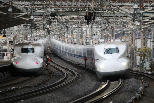 train_20210103_sun_077.jpg